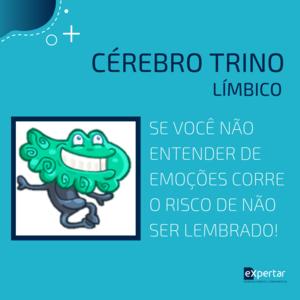 cerebro_limbico_pnl